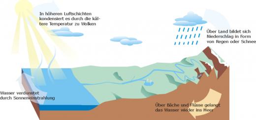 wasserkreislauf regenwassernutzung
